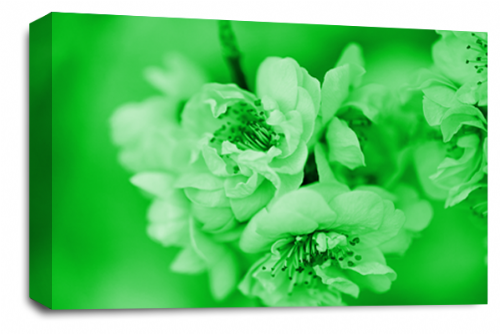 Floral Flower Wall Art Picture Green Grey Spring Blossom Print